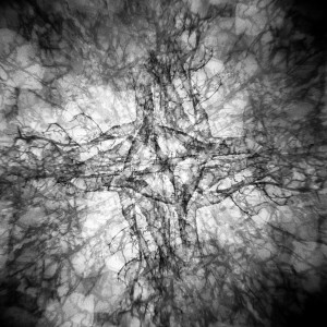 08_KK2014_David-Cory-Nebula-1-Holga