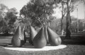 Jasper Lindell - Pears-National Gallery of Australia - No.2 Beau Brownie (Tan)