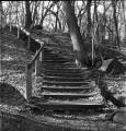 John Zimm - Stairway - Brownie Hawkeye