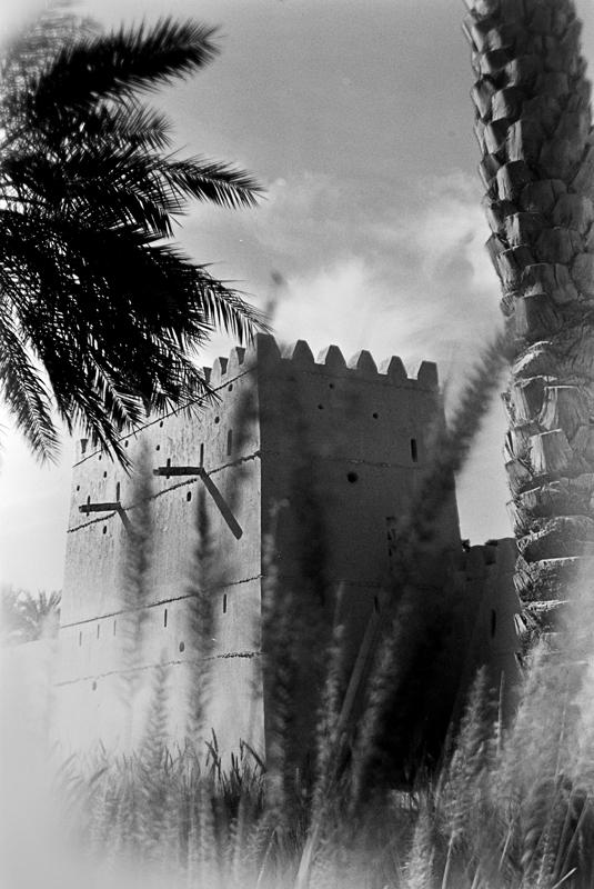 qasr_al_muwaji_brownie_001_web-b522626a7c5876bb19b1369146f7a7191b127f08